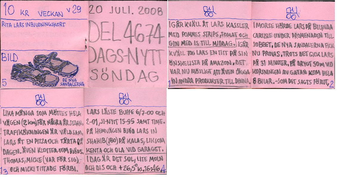 dags-nytt 20 juli 2008