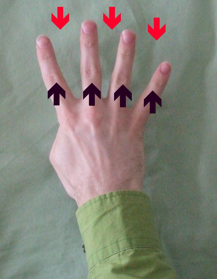 Hur många fingrar?